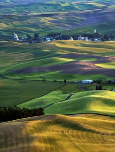 ✮ Shadows, lines and golden light of sunset over the rolling hills of the Palouse with the town of Steptoe in the distance