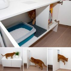 Fight the mess the cat leaves when they go to their litter box. Give them their own little litter box cubby room. It gives them their privacy and you can contain any mess on the outside of the litter box and easily clean it up. Modern Cat Furniture, Iron Furniture, Furniture Stores, Furniture Design, Diy Casa, Ideas Prácticas, Good Ideas, Home Organization, My Dream Home