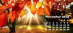 10 събития през ноември 2014 г., които не трябва да пропускате