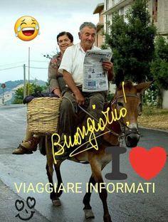 Good Morning Good Night, Day For Night, Good Morning Quotes, Italian Memes, Funny Pictures, Cristiani, Geronimo, Karaoke, Buddha