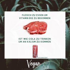 """Vegan Was Sonst 🌱 on Instagram: """"Für viele Kritiker ist der Fakt, dass Veganer Vitamin B12 als Ergänzung nehmen sollten der Beweis dafür, dass die pflanzliche Ernährung…"""" Vitamin B12, Steak, Beef, Funny, Instagram, Food, Vegans, Meat, Essen"""