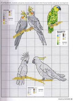 Thrilling Designing Your Own Cross Stitch Embroidery Patterns Ideas. Exhilarating Designing Your Own Cross Stitch Embroidery Patterns Ideas. Just Cross Stitch, Cross Stitch Animals, Cross Stitch Charts, Cross Stitch Designs, Cross Stitch Patterns, Cross Stitching, Cross Stitch Embroidery, Embroidery Patterns, Crochet Cross