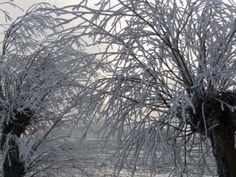 Winter aan het Wad bij Den Andel ---------Potpourri Alex de Bruin - YouTube