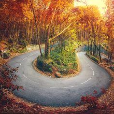 Bending Seasons by Miguel-Santos on deviantART