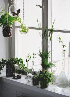 Installer des plantes en hauteur
