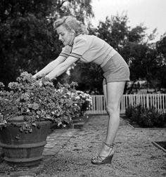 marilynmonroevideoarchives Marilyn Monroe 1950. Taken by Earl Leaf