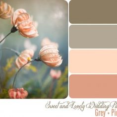 Wedding-Palette-Pink-Grey... I think i have finally settled on a color scheme for the wedding. I've been going back and forth between silver/grey and gold/taupe.