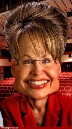 Sarah Palin, I, for one, like her,