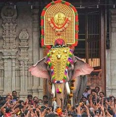 Get affordable and customized Kerala pilgrimage tours & holiday packages. Enjoy & cherish the South India pilgrimage package with us. Krishna Temple, Krishna Art, Hindu Temple, Elephant Images, Elephant Art, Village Photography, Temple India, Vijay Actor, Elephants Photos