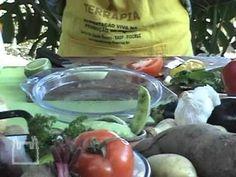 TERRAPIA - Alimentação Viva na promoção da Saúde