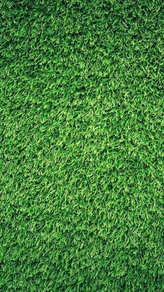 Grass Green Pattern Nature #iPhone #6 #plus #wallpaper by misty