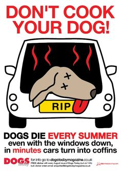 """Leaving your dog in a parked car even for a short period of time can prove fatal - temperature inside a stationary car can rapidly increase to double the outside temperature. This can happen very quickly, within a few short minutes. Dogs left in parked cars can and do die. Parking in the shade, leaving water down or car windows open is NOT enough. A dog left in a car on even a warm day can suffer heat stress and ultimately fatal heat stroke within just 10 minutes or less."""