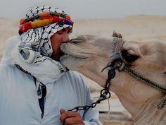 best friends in the desert....    mediterraneum: A local man and his camel, Saqqara, Egypt
