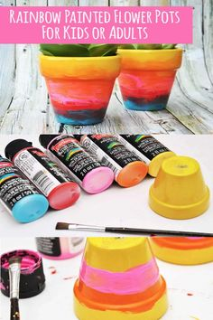 Use a variety of colors to make painted flower pots with rainbow ombre awesomeness! Both children and adults alike will love this easy craft. So fun!