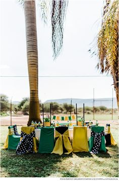 Kids party table in a green and gold theme on a farm setting Go Bokke, Kids Party Tables, Rugby Girls, South African Flag, Car Themed Parties, Party Co, African Children, Blog Online, Green And Gold