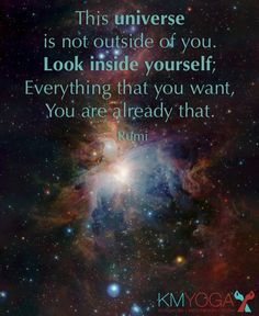 This universe is not outside of you. Look inside yourself; Everything that you want, You are already that.