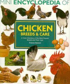 Chicken Breeds & Care: A Color Directory of the Most Popular Breeds and Their Care