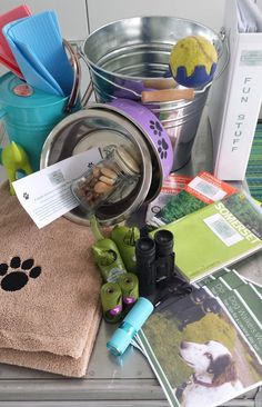 Dogs welcome at Salad Days Beach Hut
