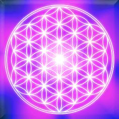 Hidden deep within our past, lies a secret that has been long forgotten: THE FLOWER OF LIFE The Flower of Life is more than just a pretty geometric design. It is a spiritual teaching tool. Within this figure are the keys to understanding and working with sacred geometry. Whether we realize it or not, sacred geometry is all around us. From the honeycombs produced by bees, to the spirals of a nautilus shell, there are geometric patterns of creation found throughout all of ...