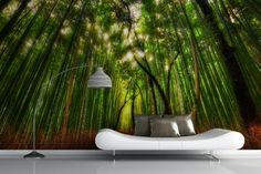 Rising Bamboo Jungle Wall Mural