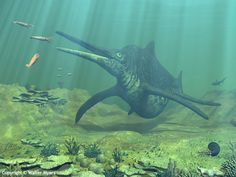 Mesozoic Earth - A late-Triassic underwater scene from the Panthalassa Ocean featuring a giant Shonisaurus ichthyosaur, Belemnites, an Ammonite, shark, giant clam, small fish, brain coral, columnar coral, staghorn coral and other undersea flora & fauna - Natural History Illustration