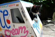 OTO Ice Cream Truck for Cats by FamousOTO on Etsy