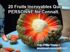 Connaissez-vous le salak, le pandanus tectorius, ou encore le jacuticaba ? Sans doute pas ! Il ne s'agit pas de noms de dinosaures éteints mais tout simplement ceux de fruits incroyables. Vous serez probablement étonnés par la diversité de ces fruits. Regardez.  Découvrez l'astuce ici : http://www.comment-economiser.fr/20-fruits-incroyables-que-personne-ne-connait.html?utm_content=bufferbb4d2&utm_medium=social&utm_source=pinterest.com&utm_campaign=buffer