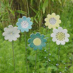 Image of Marguerites de jardin