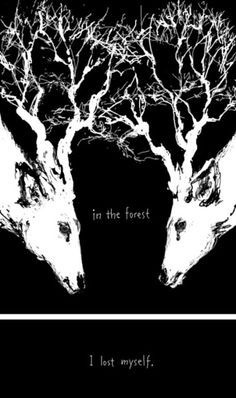 xx..tracy porter..poetic wanderlust-in the forest