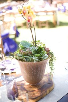 38_succulent_French_Glass_Orchid_Centerpiece_Reception_KR