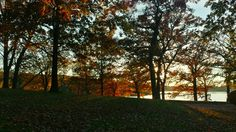 Beautiful day at Rock Cut State Park ♡♡♡