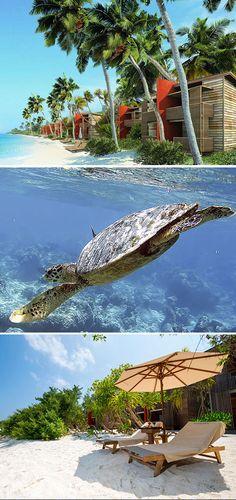 Betaalbaar verblijven op de Malediven kan bij het viersterren Barefoot Eco Hotel.