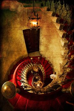 Spiral Staircase in Trieste, Italy. The mother of all staircases!