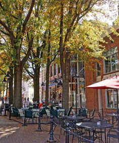 The Downtown Mall in Charlottesville Virginia... C'ville, where the other half of my family is from!