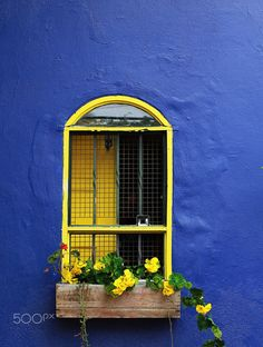 window.JPG by Julia Martins on 500px