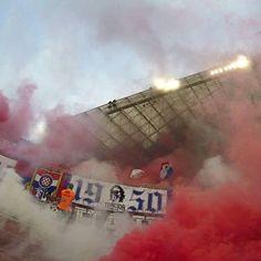 Hajduk // Torcida
