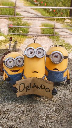 A Cute Collection Minions Movie 2015 Desktop   top minions movie chrome & iphone wallpapers for 2015 a cute collection minions movie 2015 desktop 40 best cool iphone 5 wallpapers in hd q.