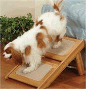 Dog Steps & Ramp