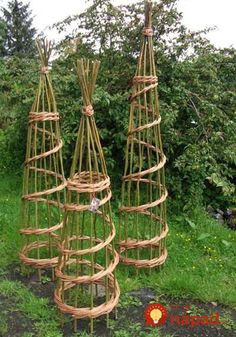 Ronny is telling you:'Willow Craft Designs Plant Supports. Could be good for Garden or Farm Weddings just thread with flowers. Garden Crafts, Garden Projects, Garden Art, Willow Garden, Willow Weaving, Plant Supports, Unique Gardens, Garden Trellis, Garden Structures