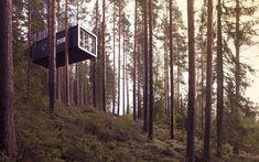 arquitectura architecture casa house diseño design árbol tree hotel miraquechulo