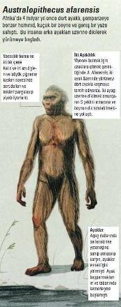 Cumhuriyet Gazetesi - (Fotoğraf) Evrimin bize attığı kazıklar