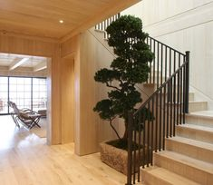 Alex Chats Design with Scott Mitchell Scott Mitchell, House Staircase, Entry Foyer, Built Environment, Stairways, Luxury Homes, Beach House, Minimalism, Building
