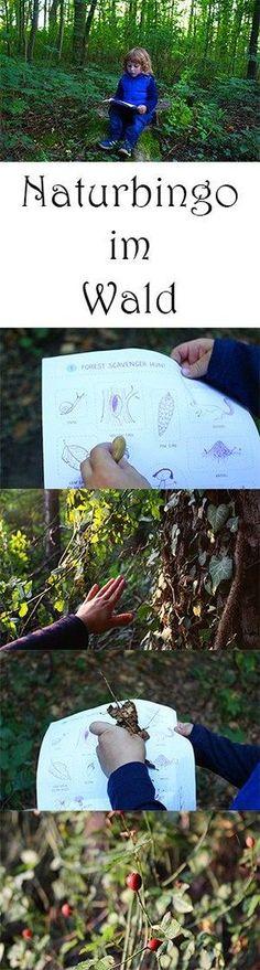 Tolle Idee, um Waldspaziergänge für Kinder spannender zu machen.