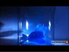 Easy Kids Science Experiments Growing Crystals Stop Motion