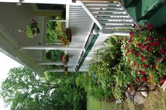 Another front porch gardening idea