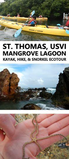 St. Thomas, US Virgin Islands - Kayak, Hike, and Snorkel Tour in the Mangrove Lagoon