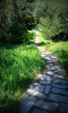a flagstone path...