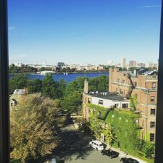 Beautiful wherever you go #onlyatBU #bostonuniversity by bwongsar