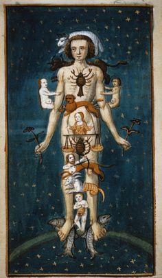 En la Edad Media se creía que había una relación médica entre los signos…