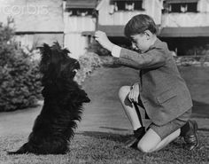 Prince Harald of Norway and Franklin D. Roosevelt's Scottish terrier, Fala, at Laura Delano's home in Rhinebeck, New York - September 26, 1944.